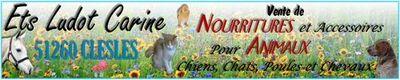 www.etsludotcarine.fr